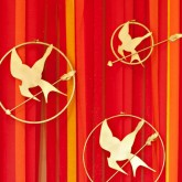 the hunger games mockingjay pin backdrop on crepe paper flames