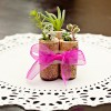 Wine Cork Succulents DIY (5)