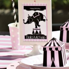 girly circus birthday party