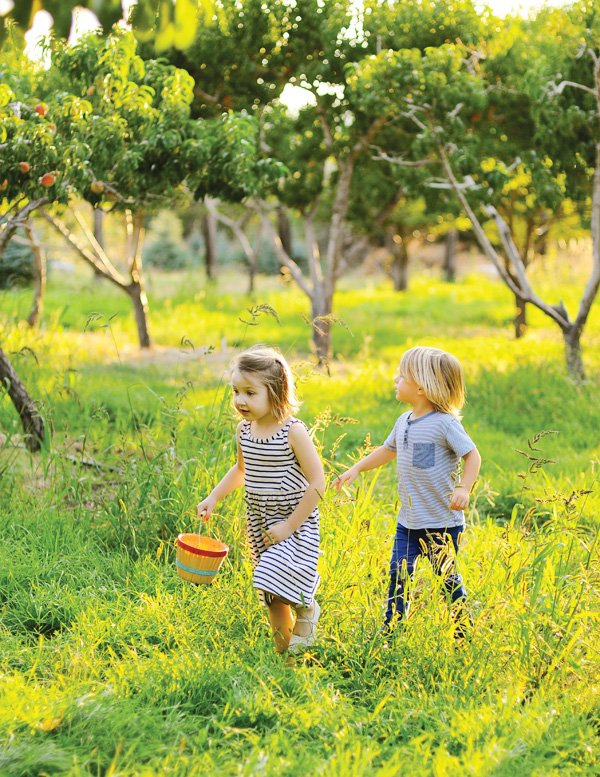 peach picking party