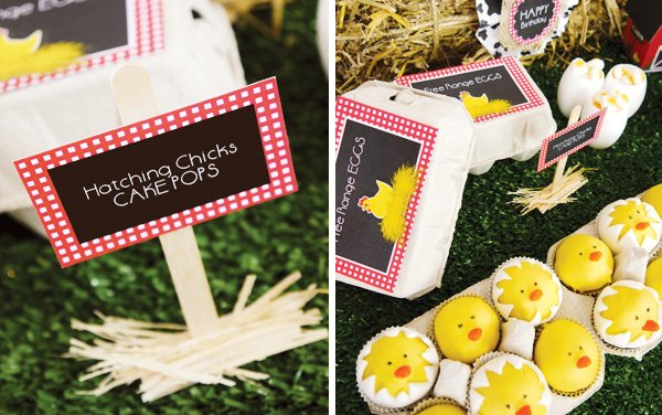 baby chick and egg cake pops
