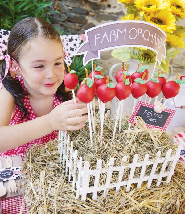 apple orchard cake pops for a barnyard birthday party