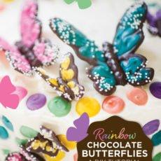 rainbow butterfly chocolate diy tutorial