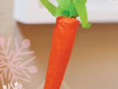 carrot diy tutorial