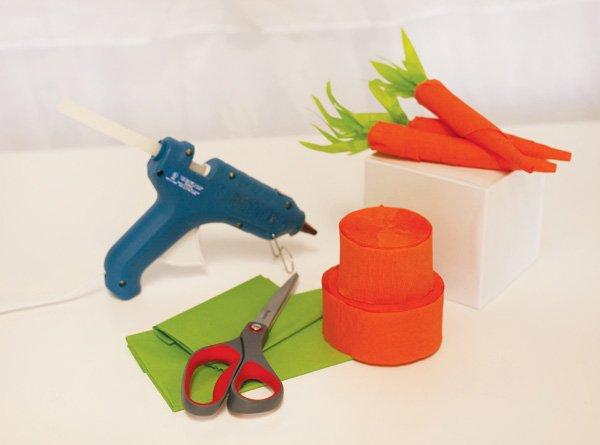 carrot diy materials hwtm