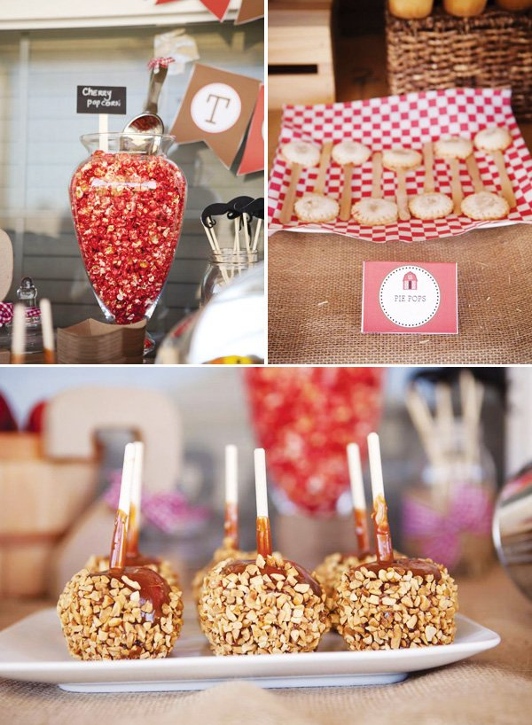 farm party sweets