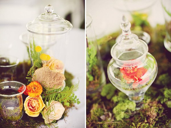 flower moss apothecary jars