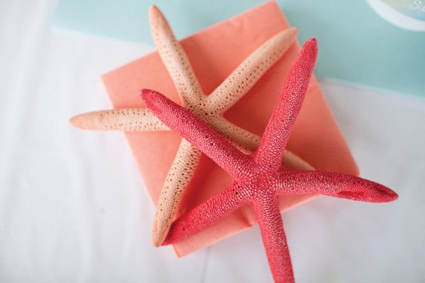 coral starfish party decorations