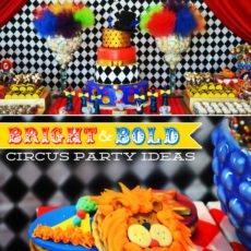 circus ideas