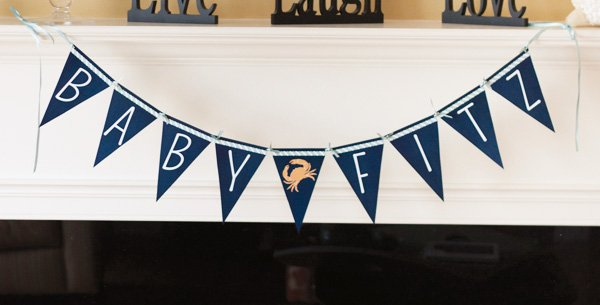 Nautical baby name banner