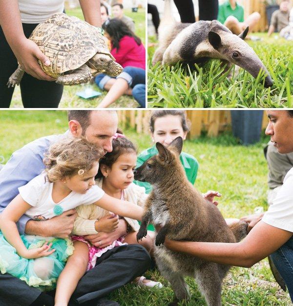 safari animal petting party