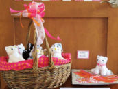 Adopt-a-cat party favors