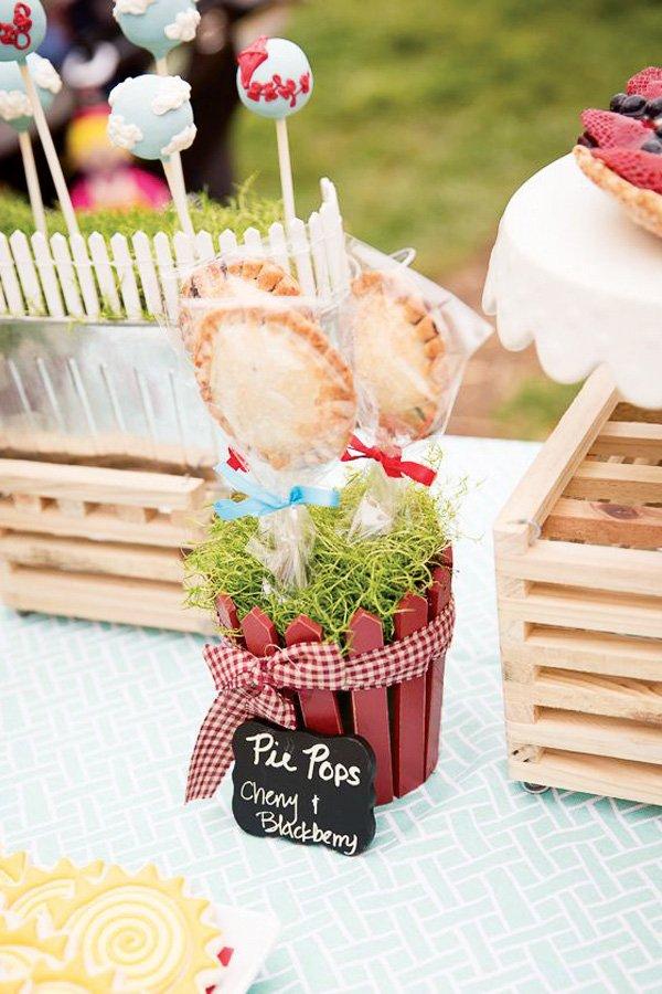 Pie Pops in Picket Fence Pots