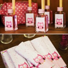 pink owl party decorations