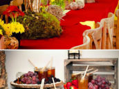 Hundred Acre Wood inspired birthday party