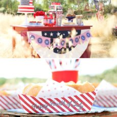 Pretty 4th of July Picnic