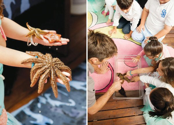 under the sea party with starfish petting zoo