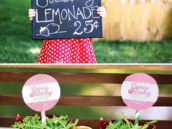 Strawberry Lemonade Stand Party