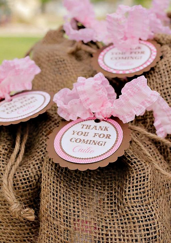 Quot Lucky Rodeo Quot Pink Cowgirl Birthday Party Hostess With