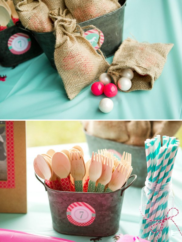 Pink and Teal Birthday Party