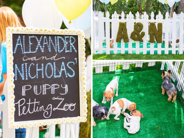 Puppy petting zoo