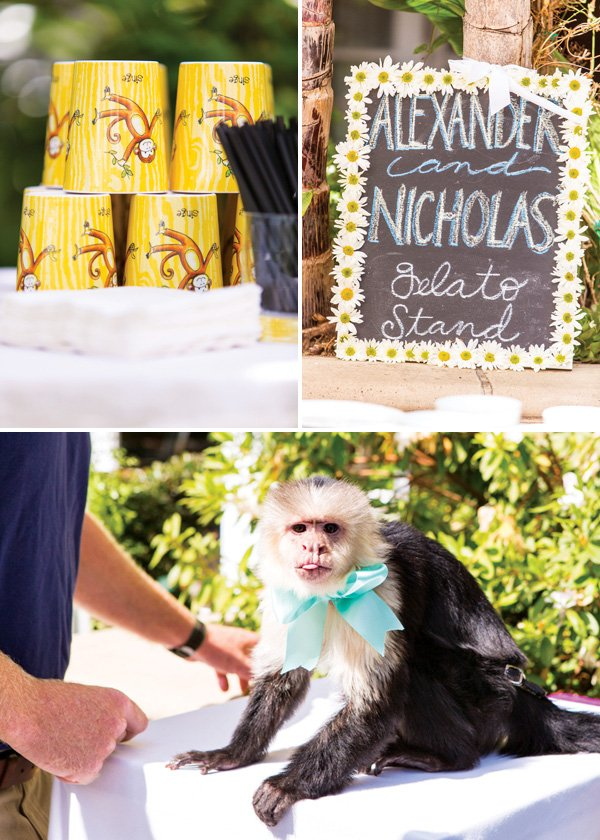 Wild animal first birthday party