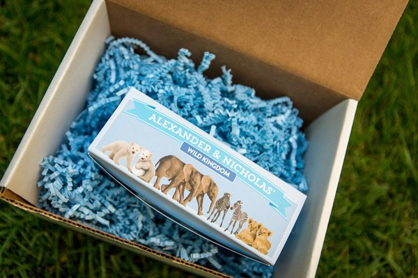 Wild kingdom party favor boxes