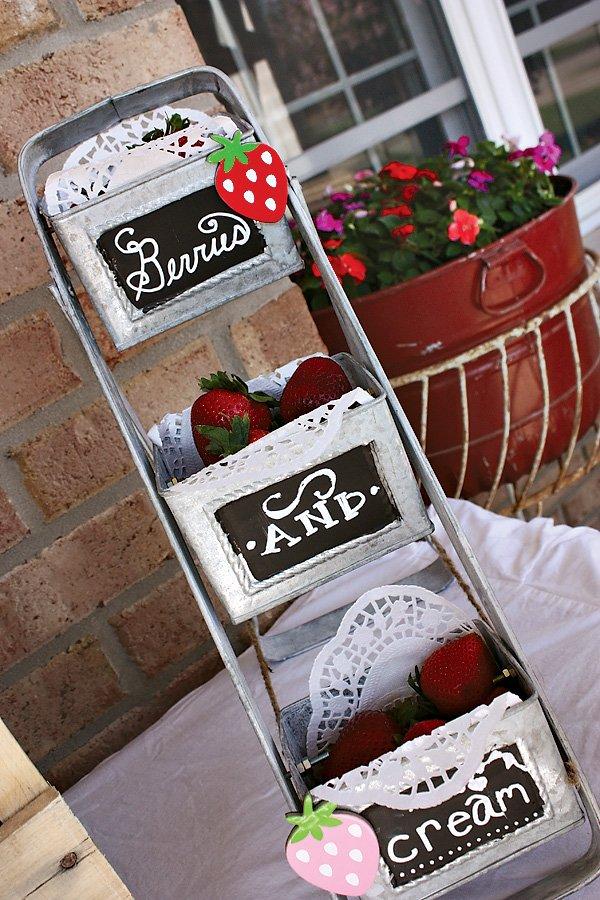 Berries and Cream Ice Cream Toppings