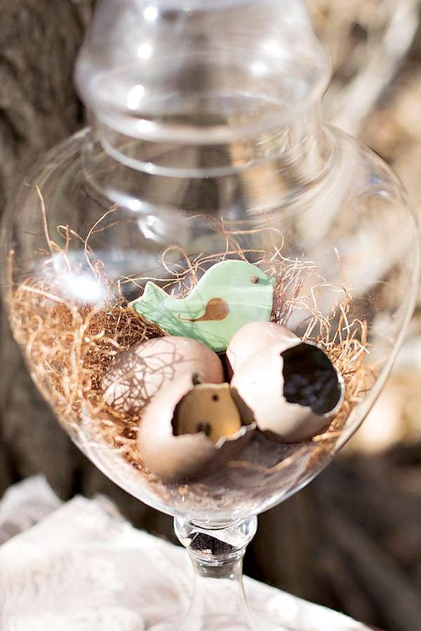 bird nest baby shower
