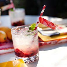 mint infused cherry spritzer recipe