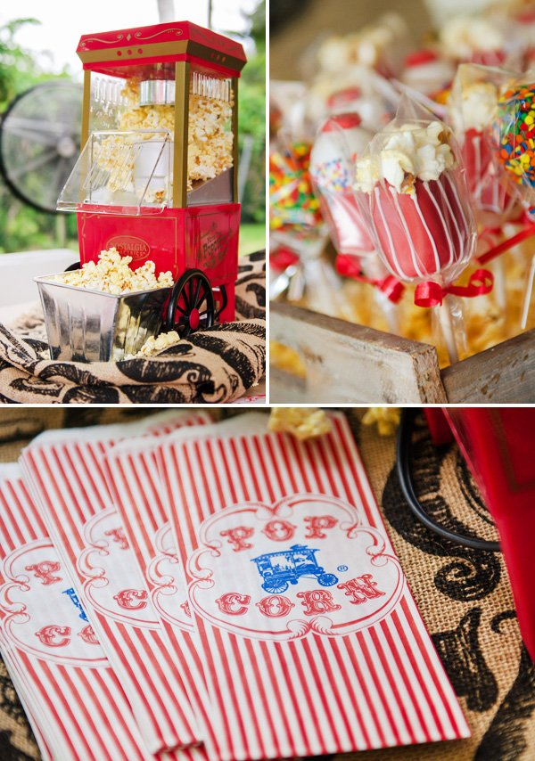 Rustic Amp Vintage Carnival Twins First Birthday Party