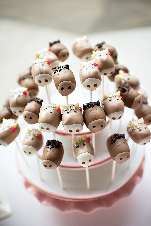 pony party cake pops