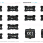 Free Printables - DWTS Season 17 Cast Labels