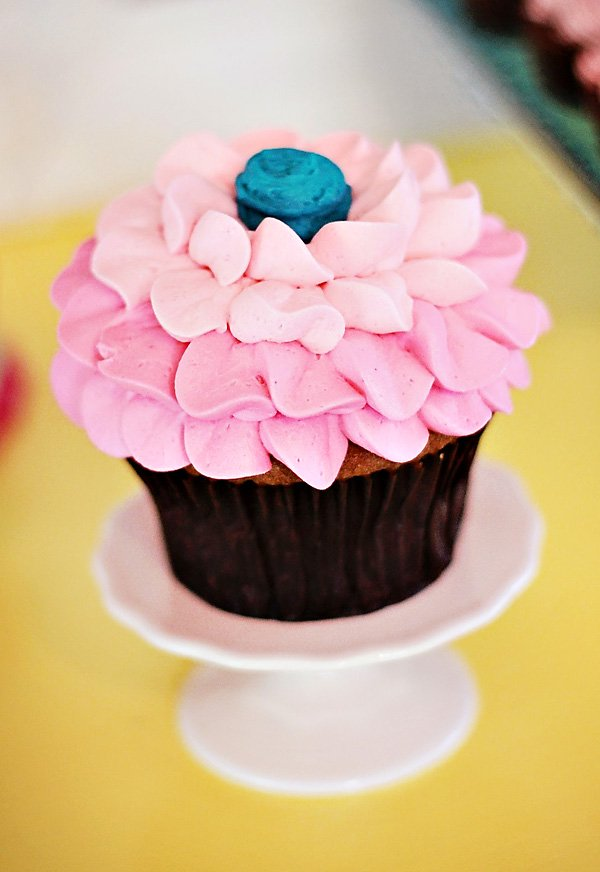 pink ombre cupcake