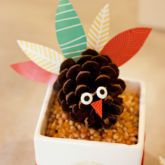 hwtm pinecone turkey thanksgiving