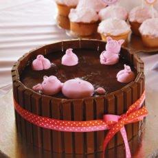 girly farm party cake idea