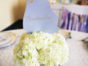 Cinderella princess party centerpiece