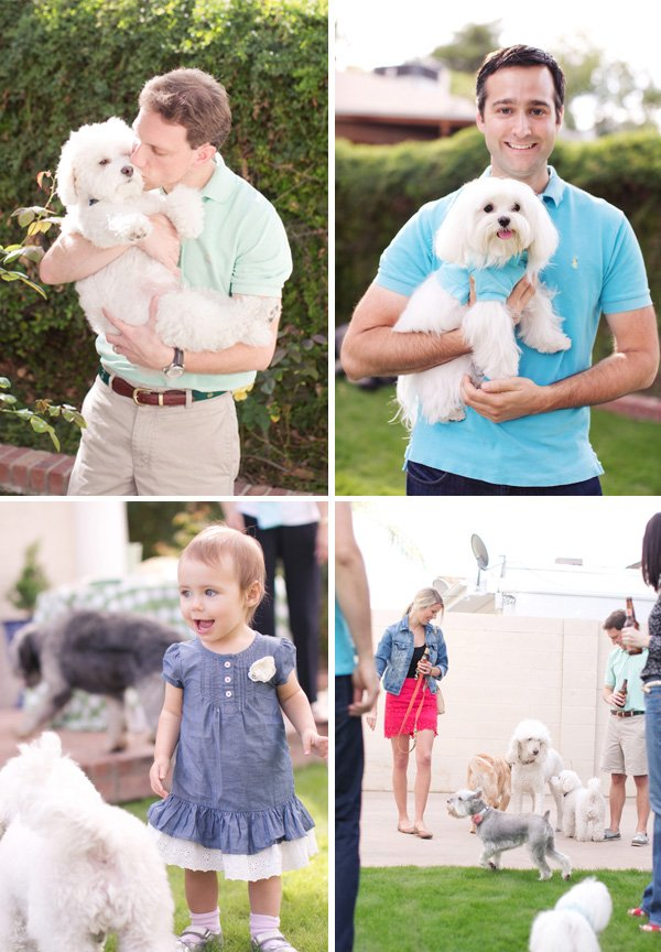 dog party guests and mini puppy polos