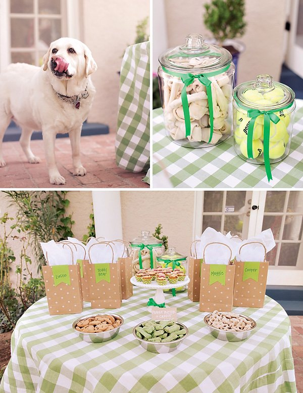 dog party treat and dessert table