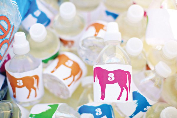 pony party printed and wrapped water bottles