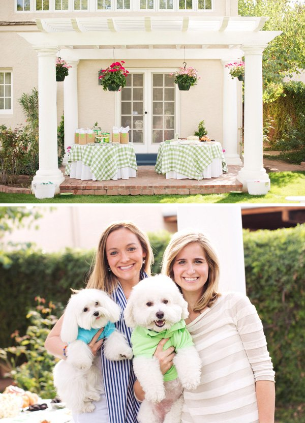 outdoor puppy and dog party ideas