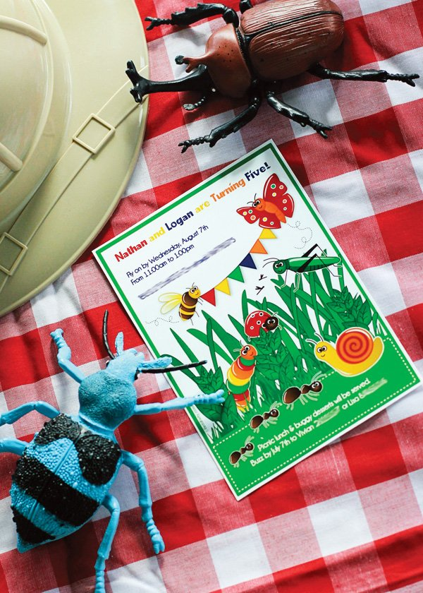 boy's bug birthday party invitation at a picnic