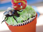 but topped potted plant cupcake with coconut grass