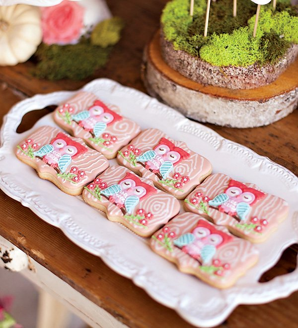 cute red owl sugar cookies