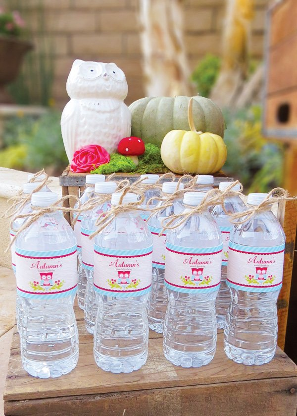 red and blue owl bottle wrap printables