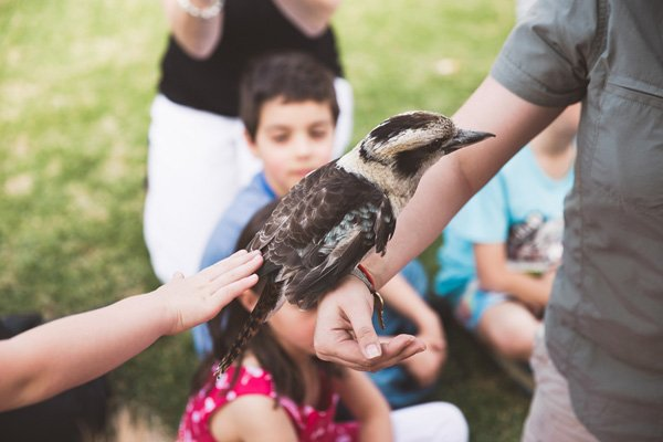 children petting a bird - party activity