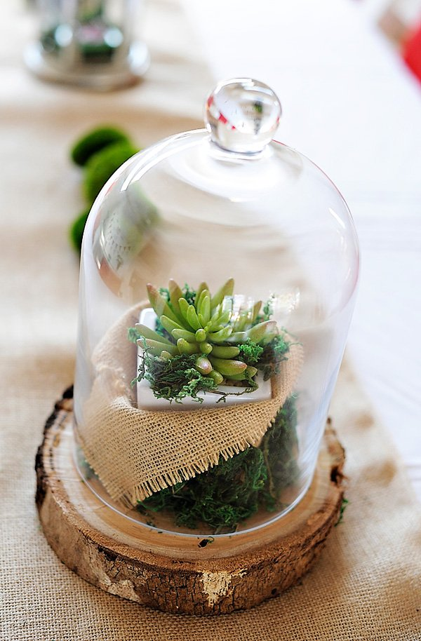 DIY woodsy terrarium centerpieces for a little red riding hood birthday party