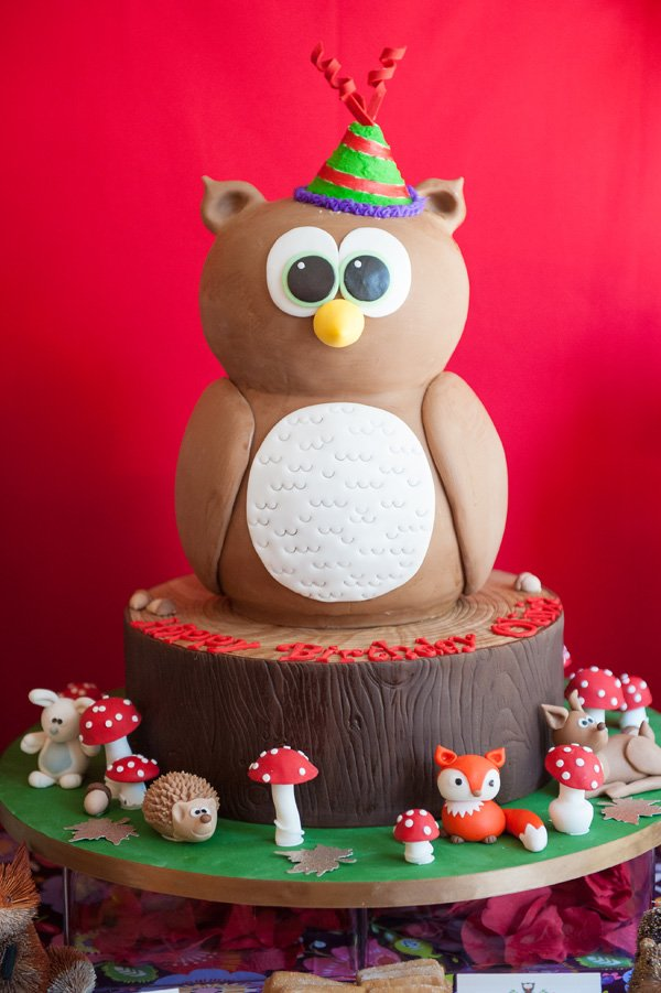 woodland owl cake with party hat and surrounded by wild mushrooms, leaves and other animals