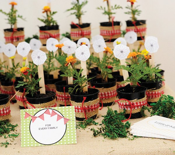 little red riding hood potted plant party favors