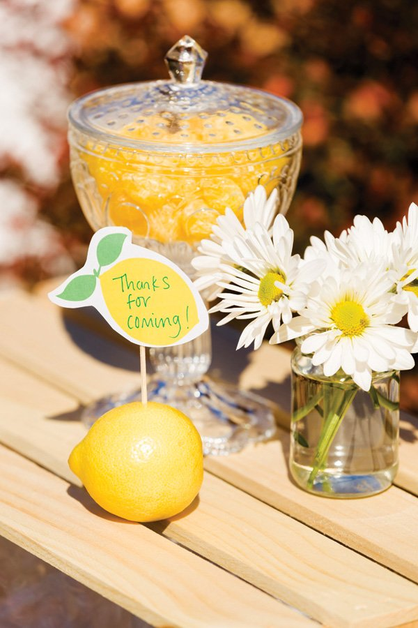lemonade party favors and hand written printables